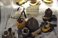 PhotosVernissagePeniche chocolaté_0001